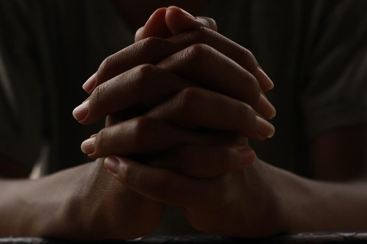 Lutja, Një Kauzë e Përbashkët