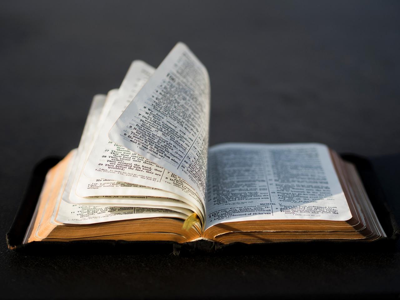 Përvoja apo Shkrimi – Kush është standarti yt?
