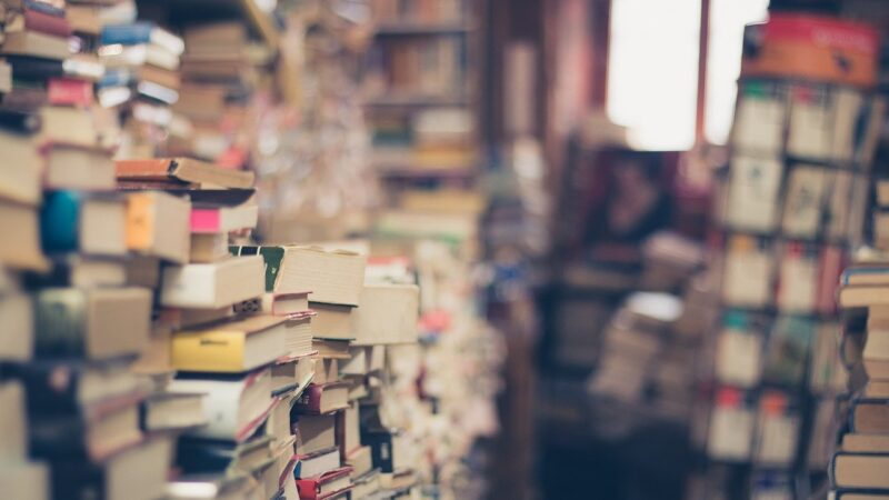 Pse duhet ti lexojmë shkrimet dhe komentarët e njerëzve