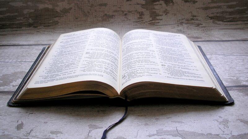 A është e padrejtë Zgjedhja dhe Paracaktimi?