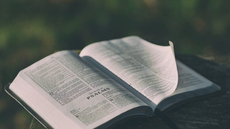 Interpretimi i duhur i Gjonit 3:16